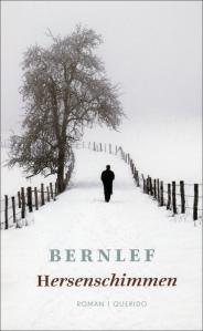 Bernlef - Hersenschimmen